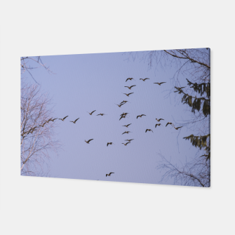 Miniatur Flying geese Canvas, Live Heroes