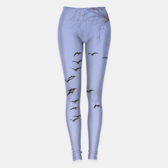Miniatur Flying geese Leggings, Live Heroes
