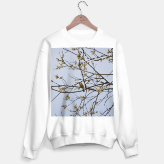 Miniatur Early spring Sweater regular, Live Heroes