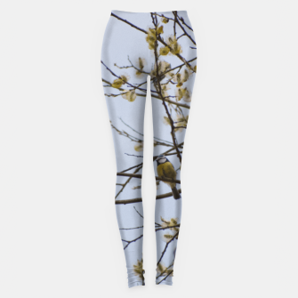 Miniatur Early spring Leggings, Live Heroes
