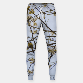 Miniatur Early spring Cotton sweatpants, Live Heroes