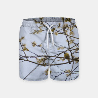 Miniatur Early spring Swim Shorts, Live Heroes