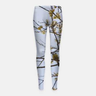 Miniatur Early spring Girl's leggings, Live Heroes