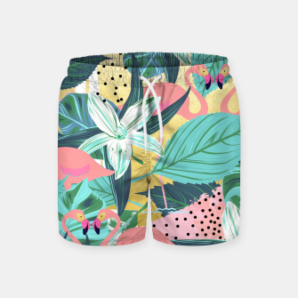Flamingo Tropical Swim Shorts Bild der Miniatur