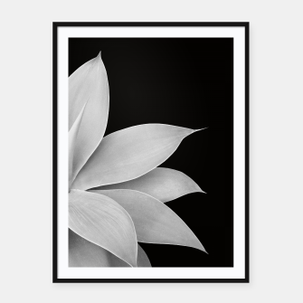Thumbnail image of Agave Finesse #2 Gray Agave Plant on Black Background #tropical #decor #art Plakat mit rahmen, Live Heroes