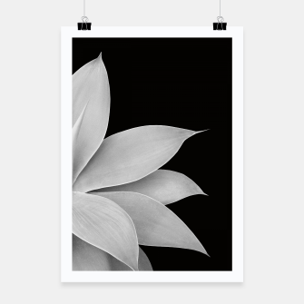 Thumbnail image of Agave Finesse #2 Gray Agave Plant on Black Background #tropical #decor #art Plakat, Live Heroes
