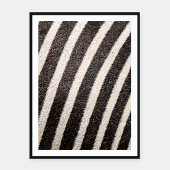 Thumbnail image of Zebra Stripe Fur Design Framed poster, Live Heroes