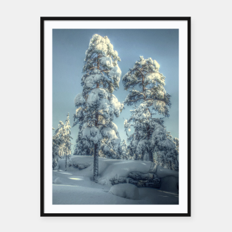 Thumbnail image of Snowy trees, Live Heroes