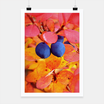 Thumbnail image of Autumn Bilberry Poster, Live Heroes