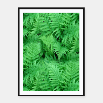 Thumbnail image of Fern Framed poster, Live Heroes