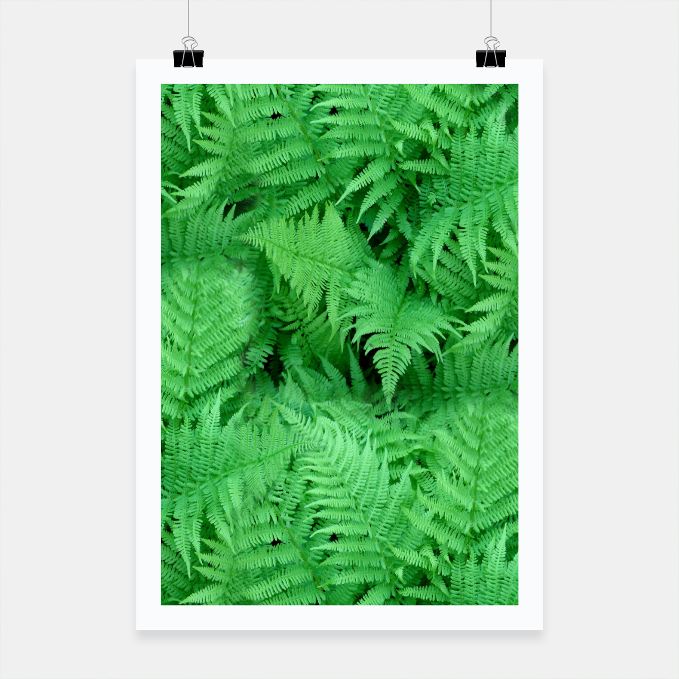 Image of Fern Poster - Live Heroes