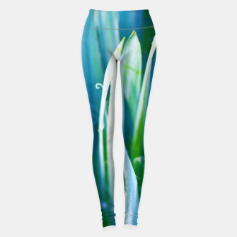 Thumbnail image of Heart of Nature Leggings, Live Heroes