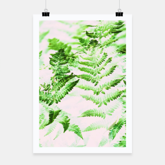Thumbnail image of Fern Forest Poster, Live Heroes