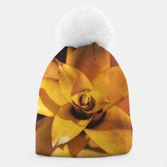 Thumbnail image of Bromeliad Beanie, Live Heroes