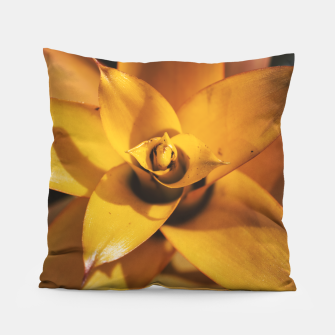 Thumbnail image of Bromeliad Pillow, Live Heroes