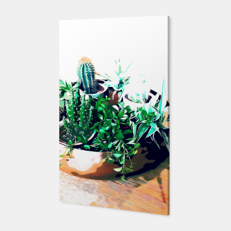 Thumbnail image of Cacti in a Copper Pot Canvas, Live Heroes