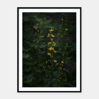 Thumbnail image of Yellow flowers Framed poster, Live Heroes