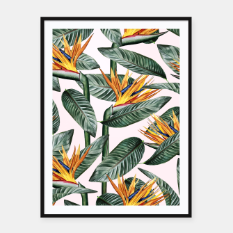Thumbnail image of Bird Of Paradise Pattern  Framed poster, Live Heroes