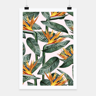 Thumbnail image of Bird Of Paradise Pattern  Poster, Live Heroes