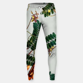 Thumbnail image of Under the Tamarind Tree Cotton sweatpants, Live Heroes