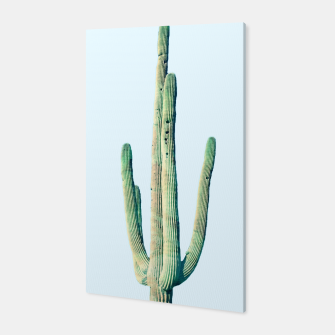 Thumbnail image of Loner Cactus Canvas, Live Heroes