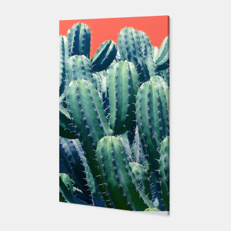 Thumbnail image of Cactus on Coral Canvas, Live Heroes