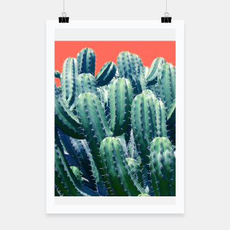 Thumbnail image of Cactus on Coral Poster, Live Heroes