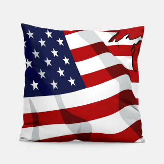 American Flag On Red Pillow obraz miniatury