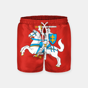 Thumbnail image of State flag of Lithuania Knight On Red Swim Shorts, Live Heroes