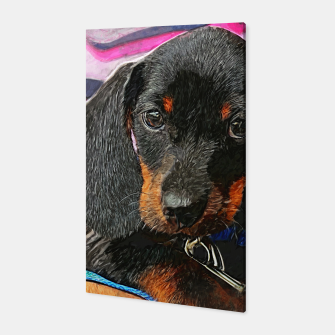 Miniatur puppy of dachshund Canvas, Live Heroes