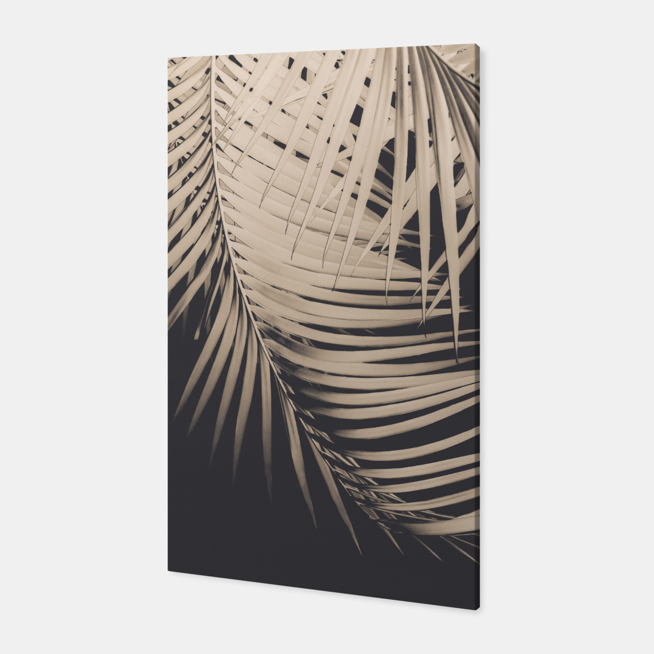 Image of Palm Leaves Sepia Vibes #1 #tropical #decor #art Canvas - Live Heroes