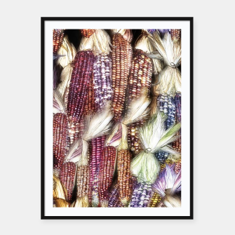 Thumbnail image of Fall Harvest Corn Framed poster, Live Heroes
