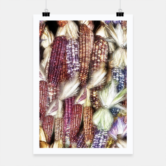 Thumbnail image of Fall Harvest Corn Poster, Live Heroes