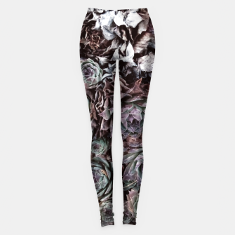 Thumbnail image of Tarnished flover Leggings, Live Heroes