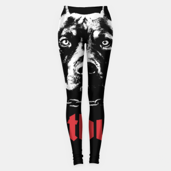 Thumbnail image of Pitbull My Personal Trainer Leggings, Live Heroes