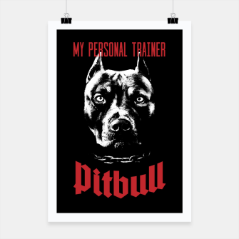 Pitbull My Personal Trainer Poster thumbnail image