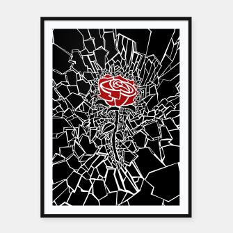 Thumbnail image of The Shattered Rose Framed poster, Live Heroes