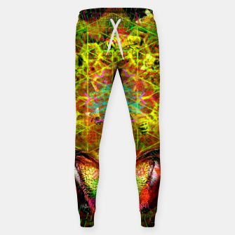 Miniatur Honeycomb Hideout (psychedelic, visionary, abstract, bees) Cotton sweatpants, Live Heroes