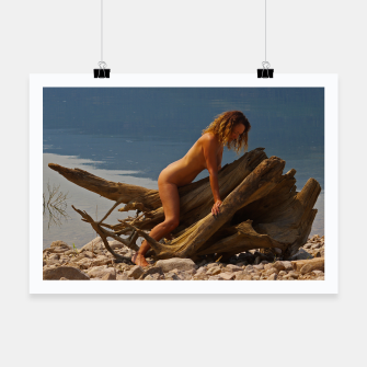 Miniaturka Driftwood Beach Naked Nude Sexy Model amyrogers, Live Heroes