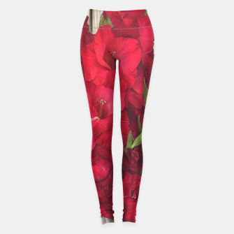 Imagen en miniatura de Red Gladiolas on Rustic White Leggings, Live Heroes