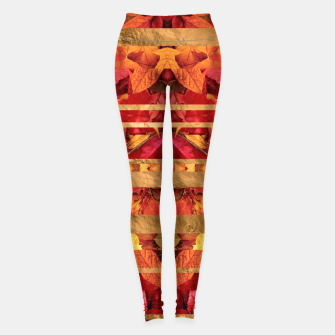 Autumn moods Leggings thumbnail image