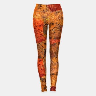 Thumbnail image of Autumn moods Leggings, Live Heroes