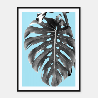 Thumbnail image of Monstera Delight #1 #tropical #decor #art Plakat mit rahmen, Live Heroes