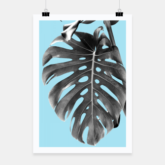 Thumbnail image of Monstera Delight #1 #tropical #decor #art Plakat, Live Heroes