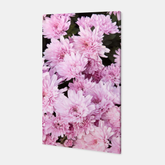 Thumbnail image of A Sea of Light Pink Chrysanthemums #1 #floral #art Canvas, Live Heroes