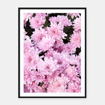 Thumbnail image of A Sea of Light Pink Chrysanthemums #1 #floral #art Plakat mit rahmen, Live Heroes