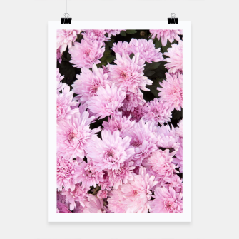 Thumbnail image of A Sea of Light Pink Chrysanthemums #1 #floral #art Plakat, Live Heroes