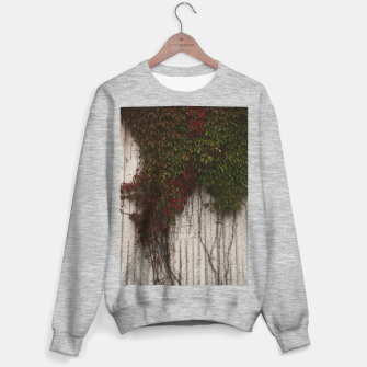 Vine wall Sweater regular Bild der Miniatur