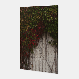 Thumbnail image of Vine wall Canvas, Live Heroes