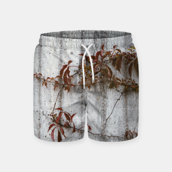 Spreading Swim Shorts Bild der Miniatur